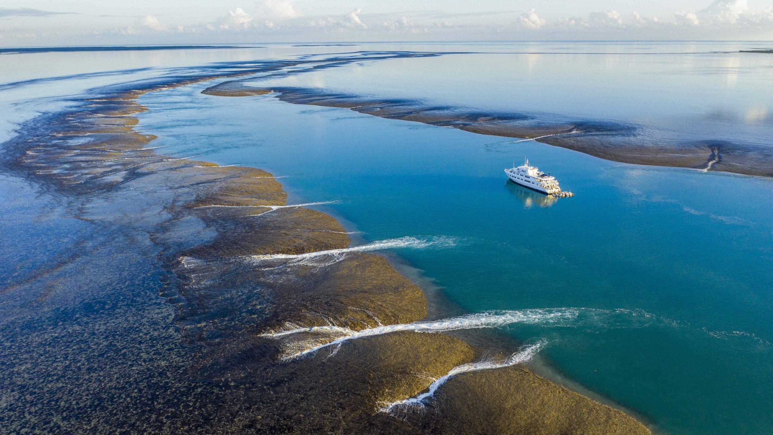 True North Kimberley Cruise Montgomery Reef