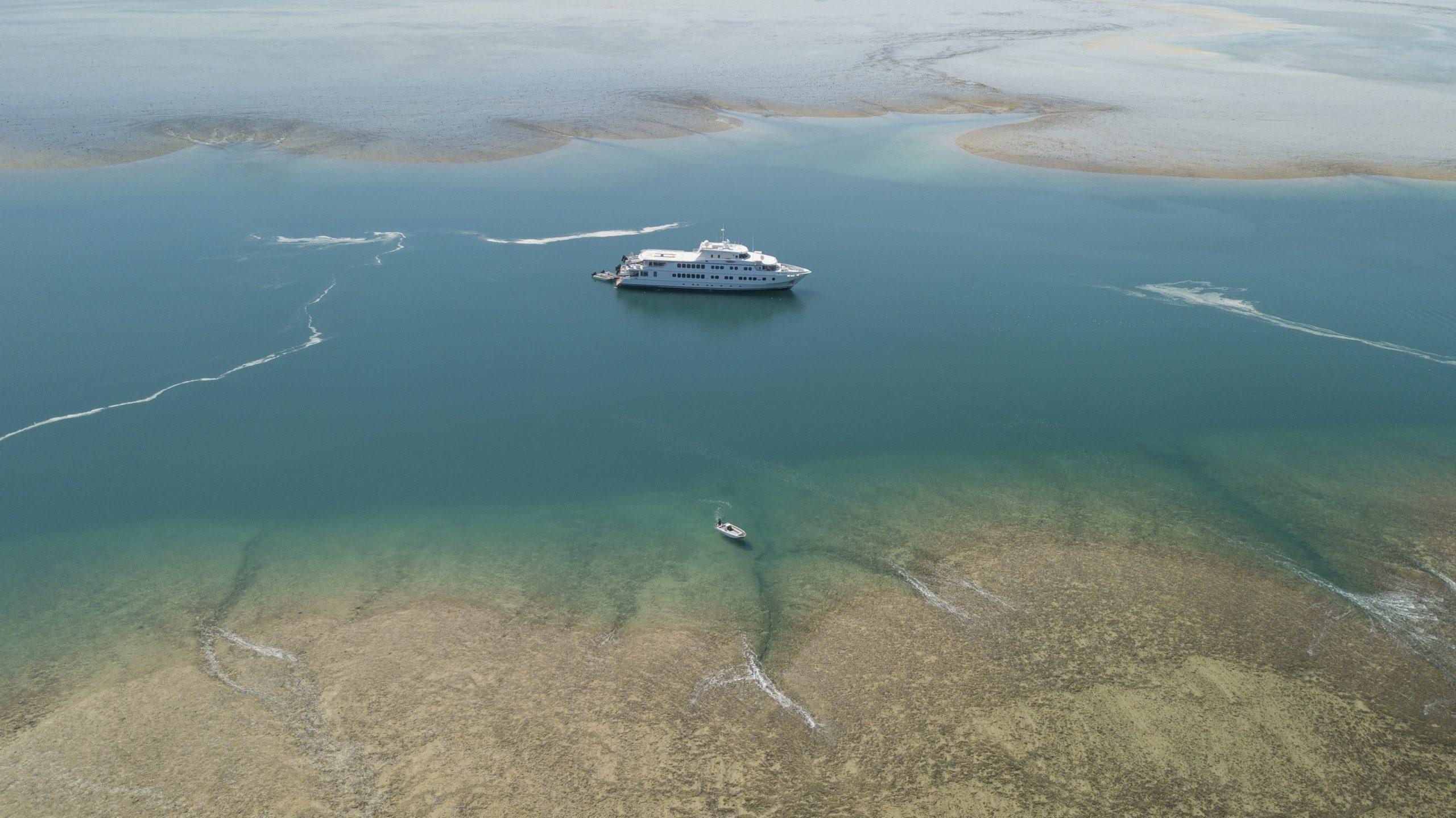 true north coast and coral cruise