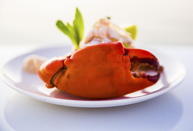 chefs particularly enjoy mud crabbin
